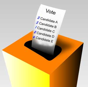 pretend voter ballot